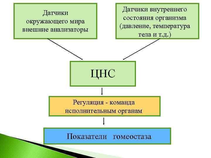 Датчики внутреннего состояния организма (давление, температура тела и т. д. ) Датчики окружающего мира