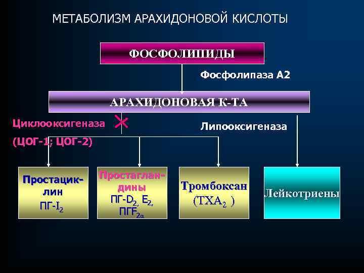 МЕТАБОЛИЗМ АРАХИДОНОВОЙ КИСЛОТЫ ФОСФОЛИПИДЫ Фосфолипаза А 2 АРАХИДОНОВАЯ К-ТА Циклооксигеназа Липооксигеназа (ЦОГ-1; ЦОГ-2) Простациклин