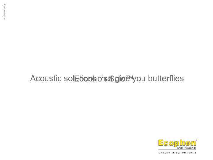 Acoustic solutions that give you butterflies Ecophon Solo™