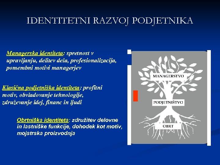 IDENTITETNI RAZVOJ PODJETNIKA Managerska identiteta: spretnost v upravljanju, delitev dela, profesionalizacija, pomembni motivi managerjev