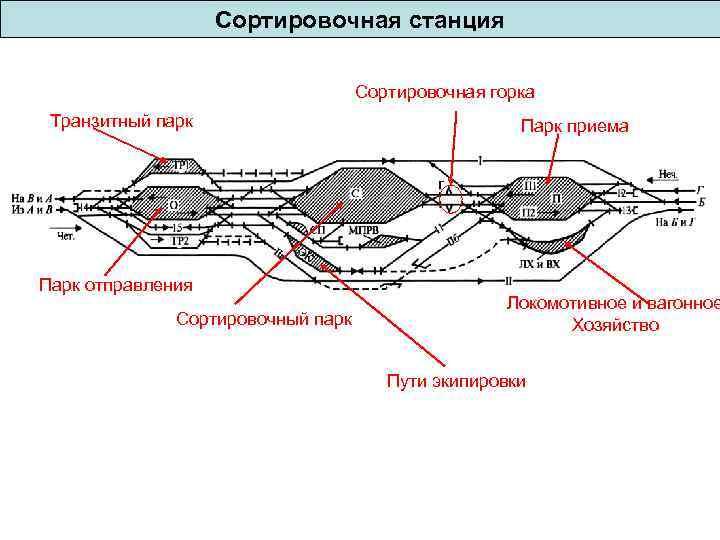 Сортировочная станция Сортировочная горка Транзитный парк Парк отправления Сортировочный парк Парк приема Локомотивное и