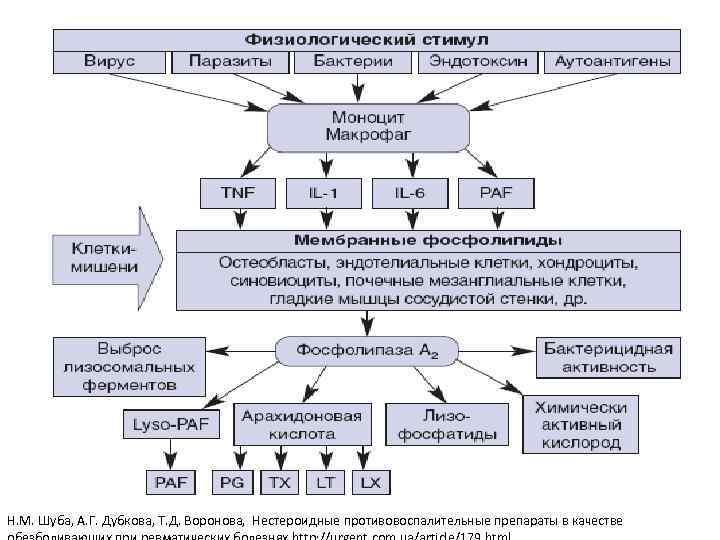 Н. М. Шуба, А. Г. Дубкова, Т. Д. Воронова, Нестероидные противовоспалительные препараты в качестве