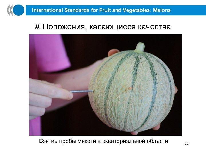 International Standards for Fruit and Vegetables: Melons II. Положения, касающиеся качества Взятие пробы мякоти
