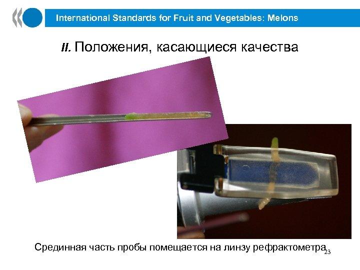 International Standards for Fruit and Vegetables: Melons II. Положения, касающиеся качества Срединная часть пробы