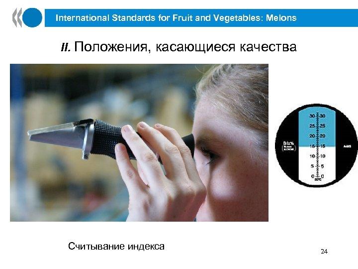 International Standards for Fruit and Vegetables: Melons II. Положения, касающиеся качества Считывание индекса 24