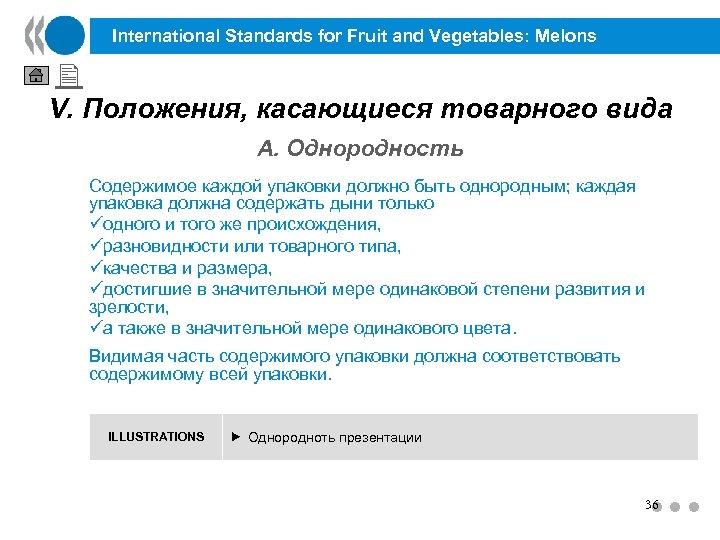 International Standards for Fruit and Vegetables: Melons V. Положения, касающиеся товарного вида A. Однородность