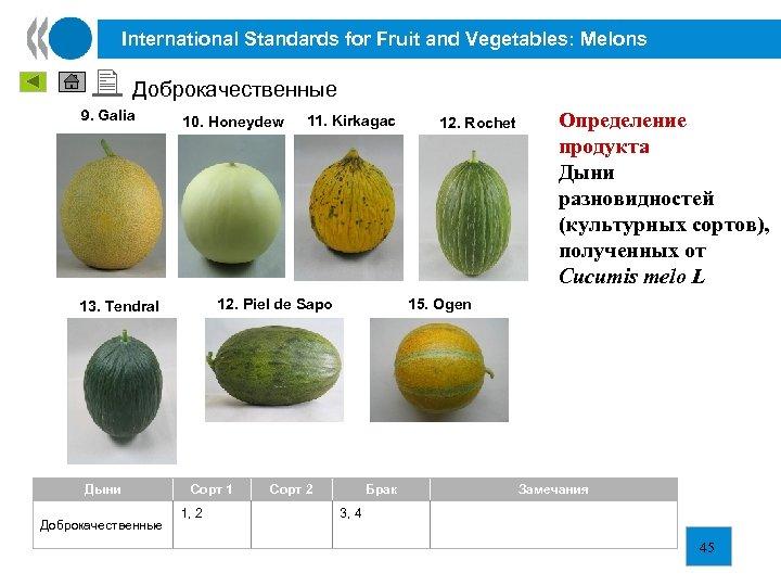 International Standards for Fruit and Vegetables: Melons Доброкачественные 9. Galia 10. Honeydew 12. Piel