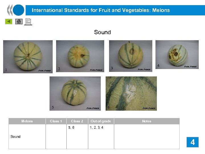International Standards for Fruit and Vegetables: Melons Sound 1 2 From France 5 Melons