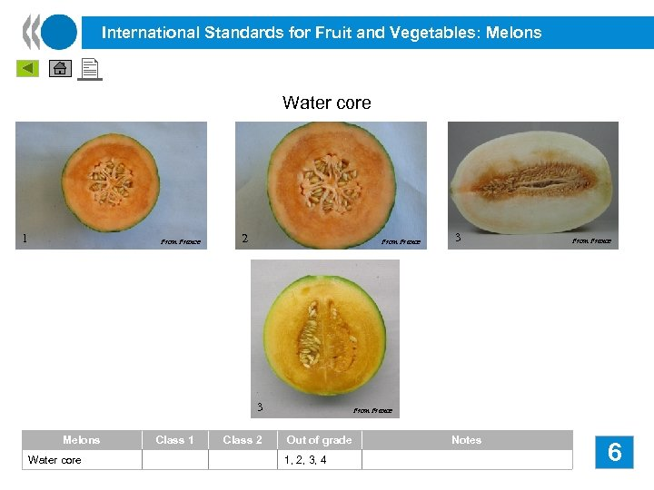International Standards for Fruit and Vegetables: Melons Water core 1 From France 2 From