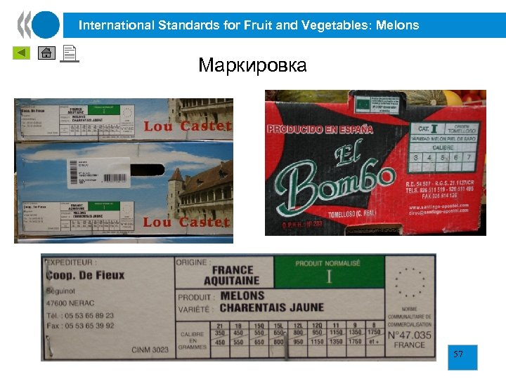 International Standards for Fruit and Vegetables: Melons Маркировка 57