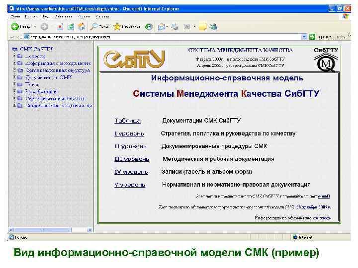 Вид информационно-справочной модели СМК (пример)