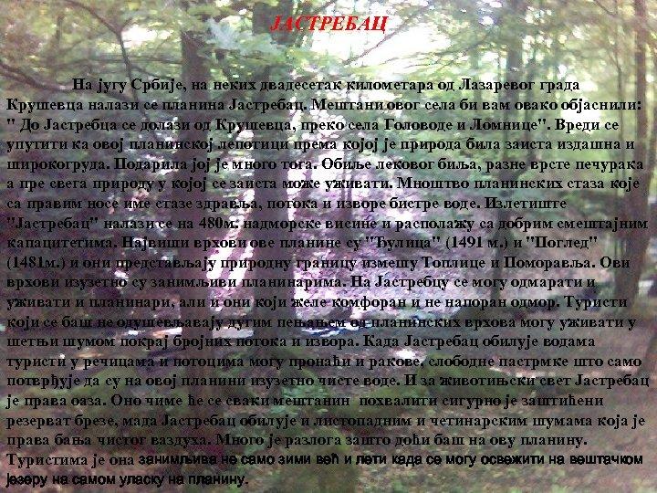 ЈАСТРЕБАЦ На југу Србије, на неких двадесетак километара од Лазаревог града Крушевца налази