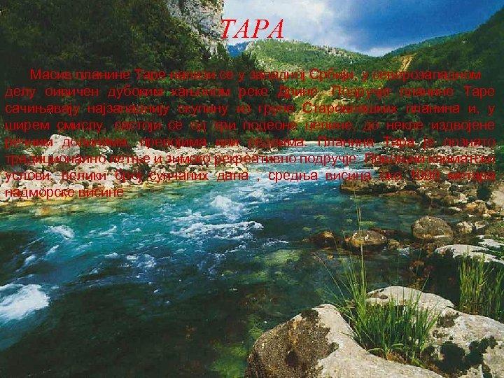 ТАРА Масив планине Таре налази се у западној Србији, у северозападном делу оивичен дубоким