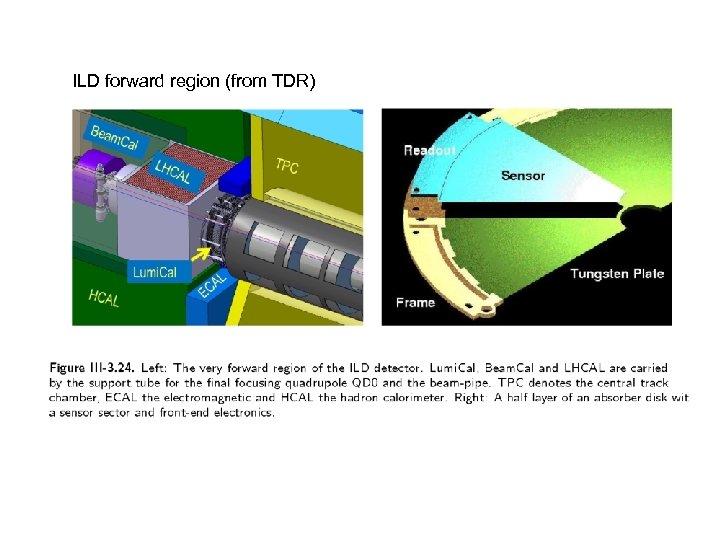 ILD forward region (from TDR)