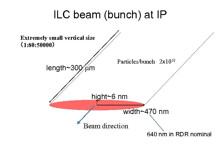 ILC beam (bunch) at IP Extremely small vertical size (1: 80: 50000) length~300 mm