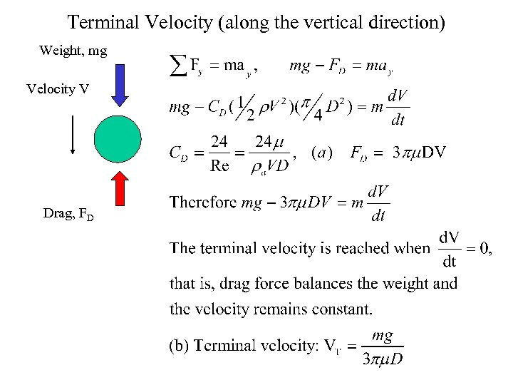 Terminal Velocity (along the vertical direction) Weight, mg Velocity V Drag, FD