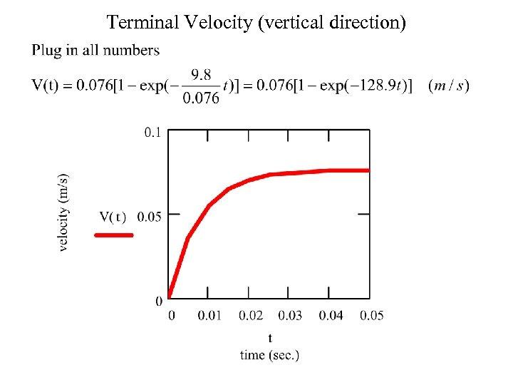 Terminal Velocity (vertical direction)
