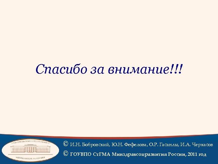 Спасибо за внимание!!! © И. Н. Бобровский, Ю. Н. Фефелова, О. Р. Гасанлы, И.