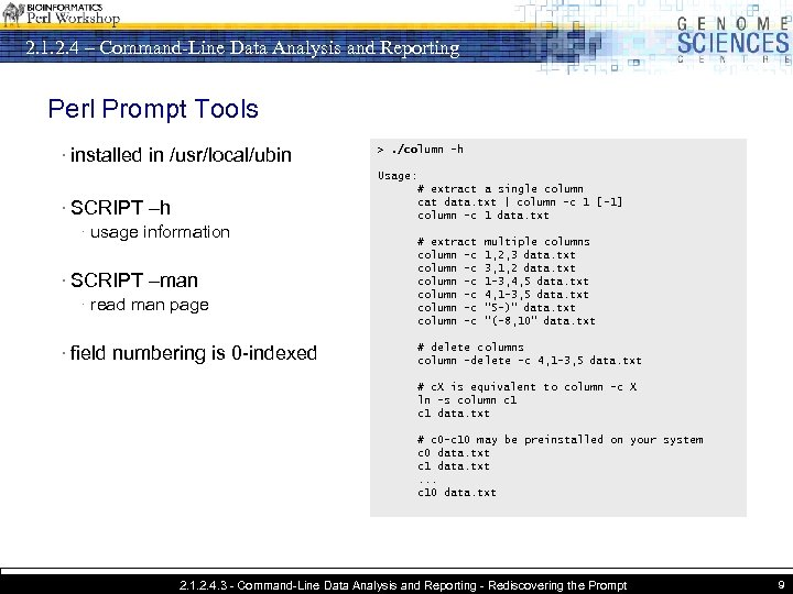 2. 1. 2. 4 – Command-Line Data Analysis and Reporting Perl Prompt Tools ·