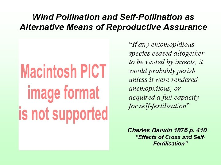 """Wind Pollination and Self-Pollination as Alternative Means of Reproductive Assurance """"If any entomophilous species"""
