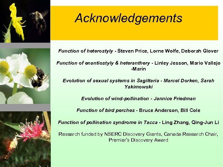 Acknowledgements Function of heterostyly - Steven Price, Lorne Wolfe, Deborah Glover Function of enantiostyly