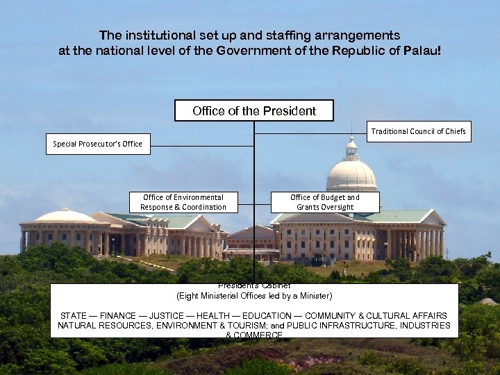 The institutional set up and staffing arrangements at the national level of the Government