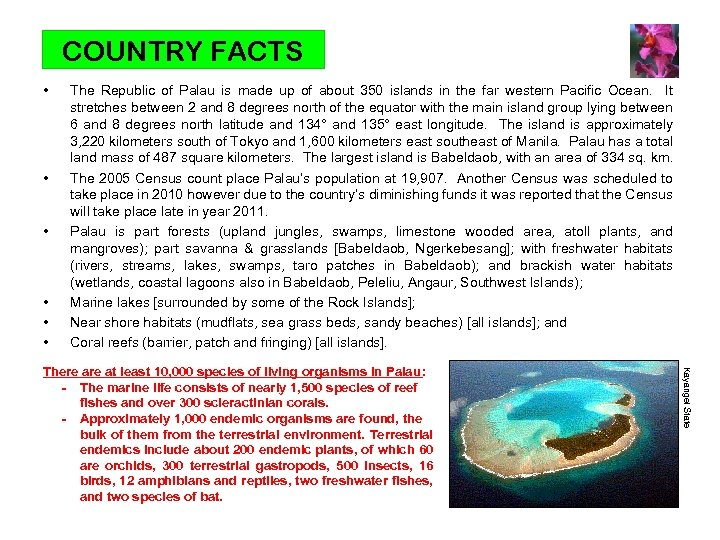 COUNTRY FACTS • • • The Republic of Palau is made up of about
