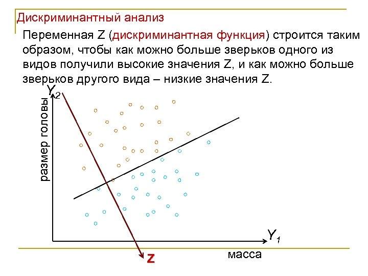 Дискриминантный анализ Переменная Z (дискриминантная функция) строится таким образом, чтобы как можно больше зверьков
