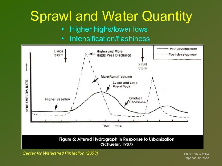 Sprawl and Water Quantity • Higher highs/lower lows • Intensification/flashiness Center for Watershed Protection
