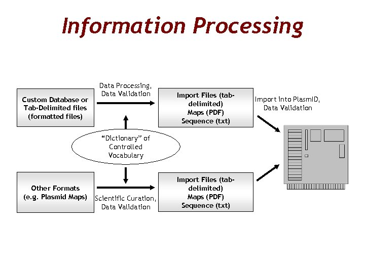 Information Processing Custom Database or Tab-Delimited files (formatted files) Data Processing, Data Validation Import