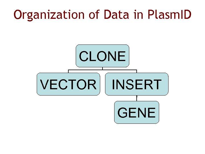 Organization of Data in Plasm. ID CLONE VECTOR INSERT GENE