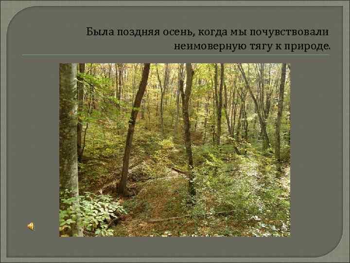 Была поздняя осень, когда мы почувствовали неимоверную тягу к природе.