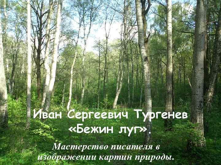 Иван Сергеевич Тургенев «Бежин луг» . Мастерство писателя в изображении картин природы.