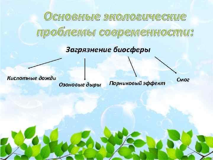 Основные экологические проблемы современности: Загрязнение биосферы Кислотные дожди Озоновые дыры Парниковый эффект Смог