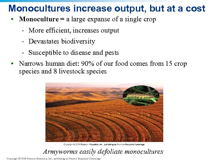 Monocultures increase output, but at a cost • Monoculture = a large expanse of