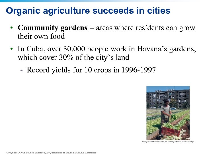 Organic agriculture succeeds in cities • Community gardens = areas where residents can grow