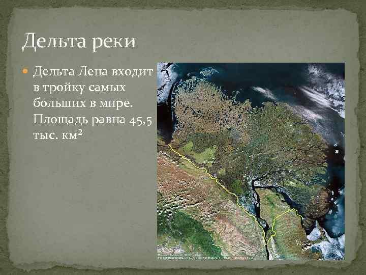 Дельта реки Дельта Лена входит в тройку самых больших в мире. Площадь равна 45,