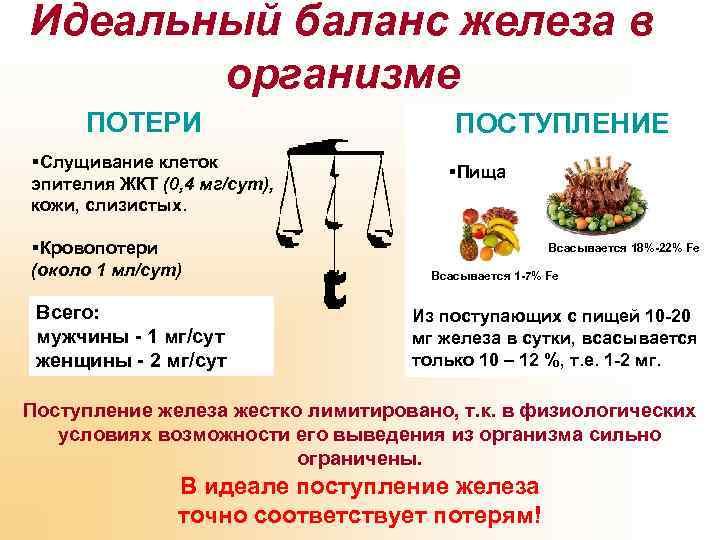 Идеальный баланс железа в организме ПОТЕРИ §Слущивание клеток эпителия ЖКТ (0, 4 мг/сут), кожи,
