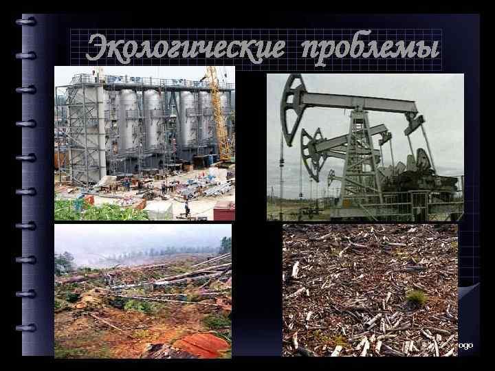 Экологические проблемы Company Logo