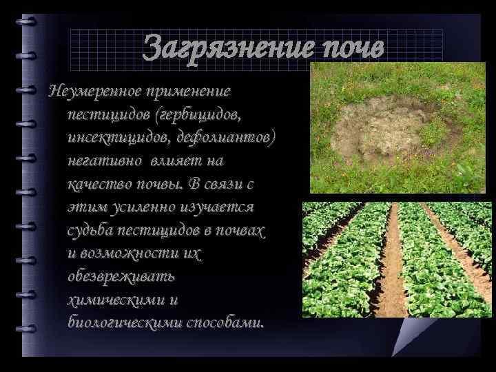 Загрязнение почв Неумеренное применение пестицидов (гербицидов, инсектицидов, дефолиантов) негативно влияет на качество почвы. В