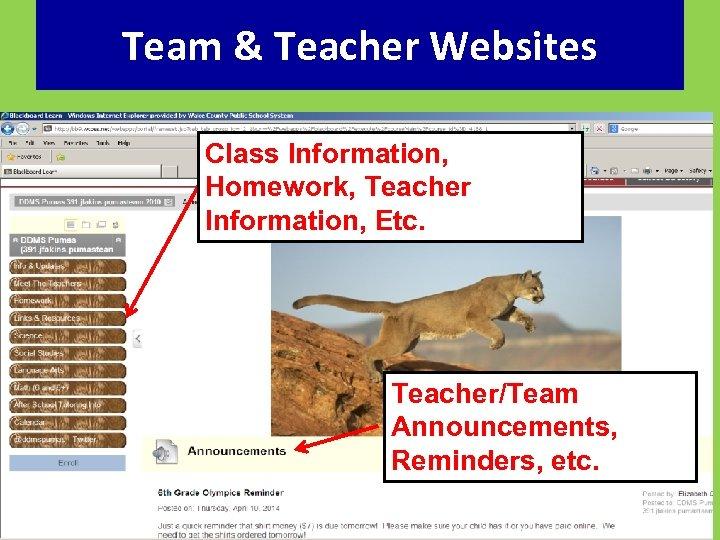 Team & Teacher Websites Class Information, Homework, Teacher Information, Etc. Teacher/Team Announcements, Reminders, etc.