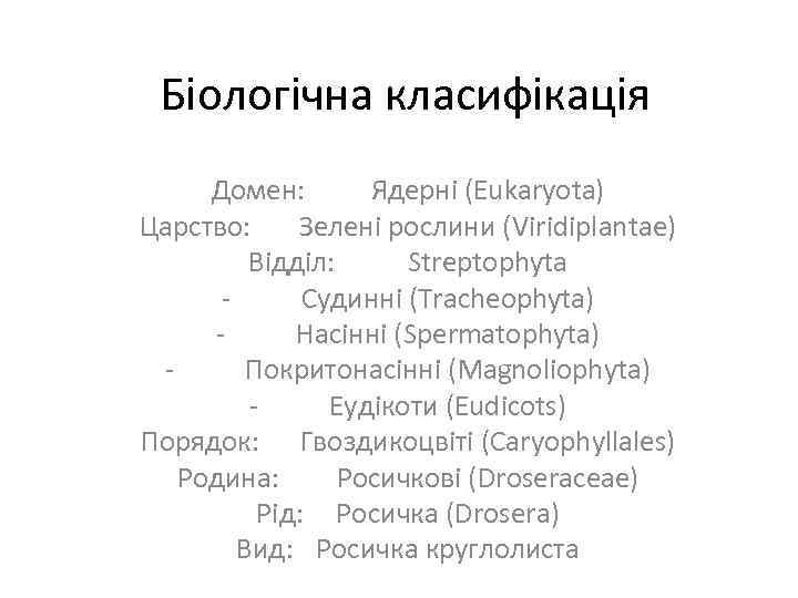 Біологічна класифікація Домен: Ядерні (Eukaryota) Царство: Зелені рослини (Viridiplantae) Відділ: Streptophyta Судинні (Tracheophyta) Насінні