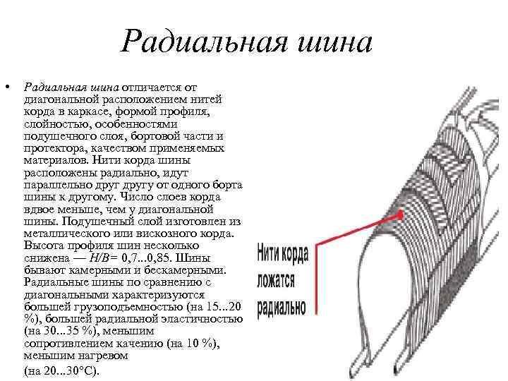 Радиальная шина • Радиальная шина отличается от диагональной расположением нитей корда в каркасе, формой