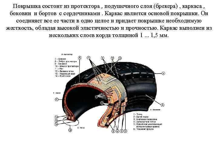 Покрышка состоит из протектора , подушечного слоя (брекера) , каркаса , боковин и бортов
