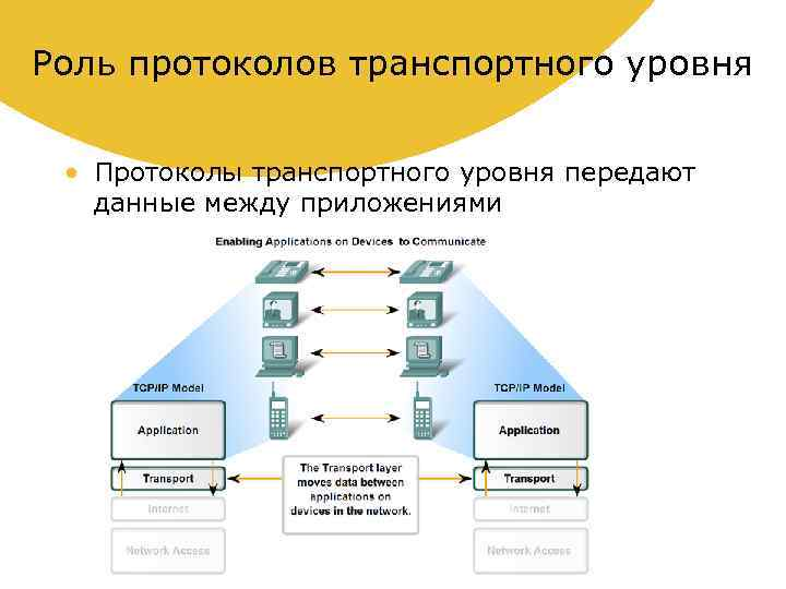 Роль протоколов транспортного уровня • Протоколы транспортного уровня передают данные между приложениями