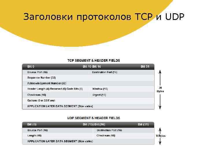 Заголовки протоколов TCP и UDP