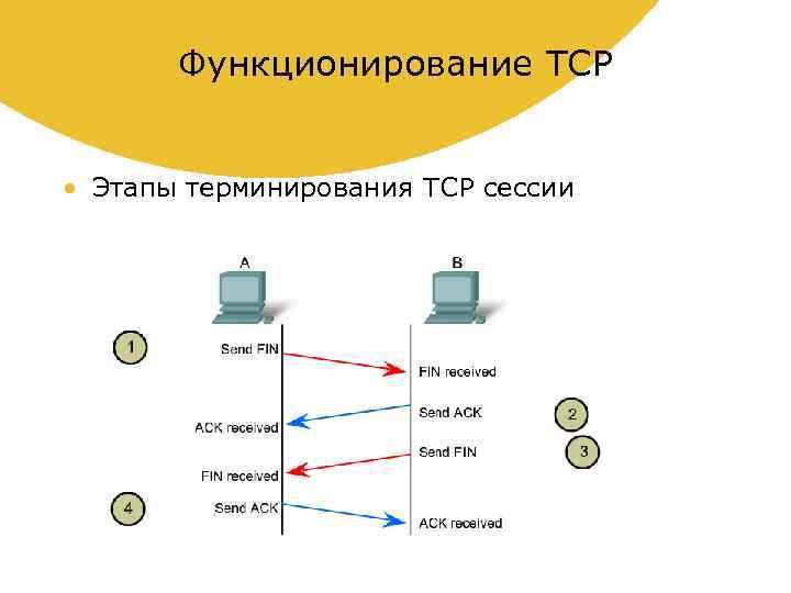 Функционирование TCP • Этапы терминирования TCP сессии