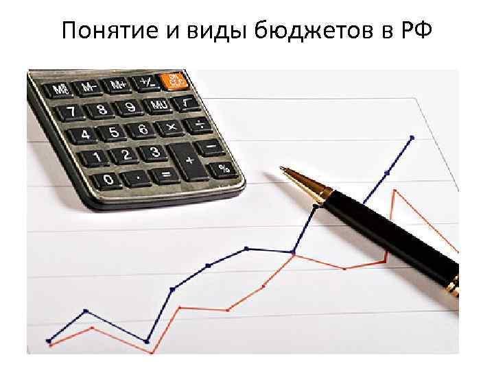 Понятие и виды бюджетов в РФ