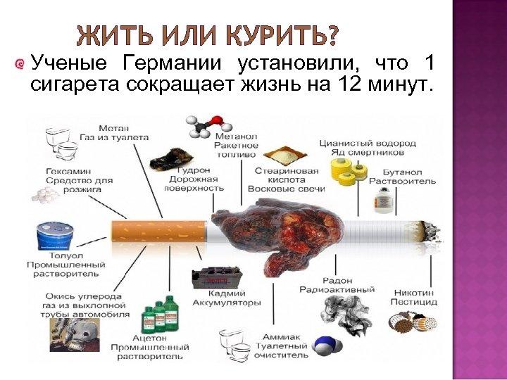 ЖИТЬ ИЛИ КУРИТЬ? Ученые Германии установили, что 1 сигарета сокращает жизнь на 12 минут.