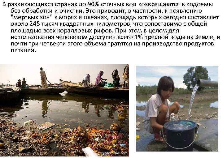 В развивающихся странах до 90% сточных вод возвращаются в водоемы без обработки и очистки.